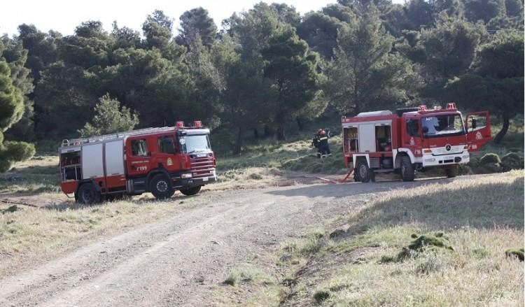 (Φωτ.: fireservice.gr)