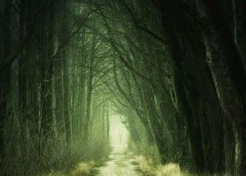 Οι βρικόλακες του Πόντου και άλλες δεισιδαιμονίες - Cover Image