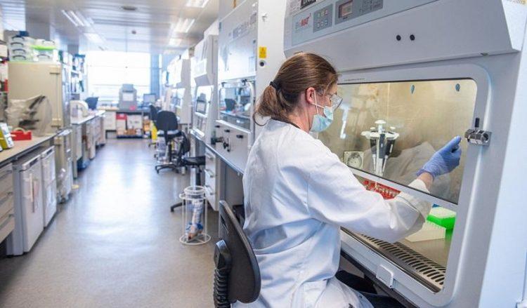 Εικόνα από τις δοκιμές του εμβολίου στα εργαστήρια του πανεπιστημίου της Οξφόρδης (φωτ.: EPA / Oxford University / John Cairns)