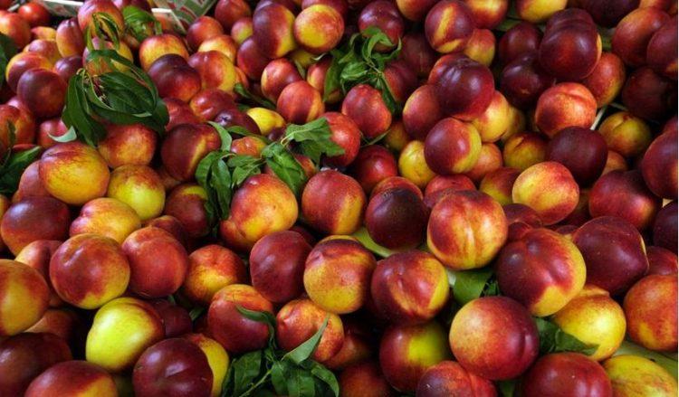Τα ελληνικά φρούτα κατέχουν σημαντική θέση στις εξαγωγές στην Αλβανία (φωτ.: ΑΠΕ-ΜΠΕ / Αλέξανδρος Μπελτές)