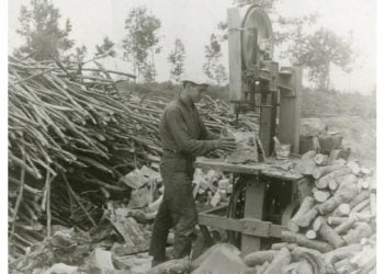 Κοπή ξύλων στη Φυτειά Ημαθίας. Απεικονίζεται ο ξυλέμπορος Γιώργος Μπεσίνας, το 1960 (πηγή: Δημόσια Κεντρική Βιβλιοθήκη της Βέροιας)