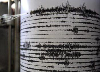seismografos 1