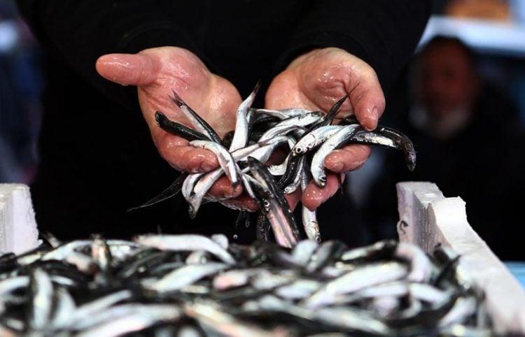 Χαψία σε αγορά της Τραπεζούντας (φωτ.: Anadolu)