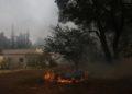 Φωτιά καίει δίπλα από την αυλή κατοικίας στη Σταμάτα, Αττικής (φωτ.: ΑΠΕ-ΜΠΕ/Γιάννης Κολεσίδης)