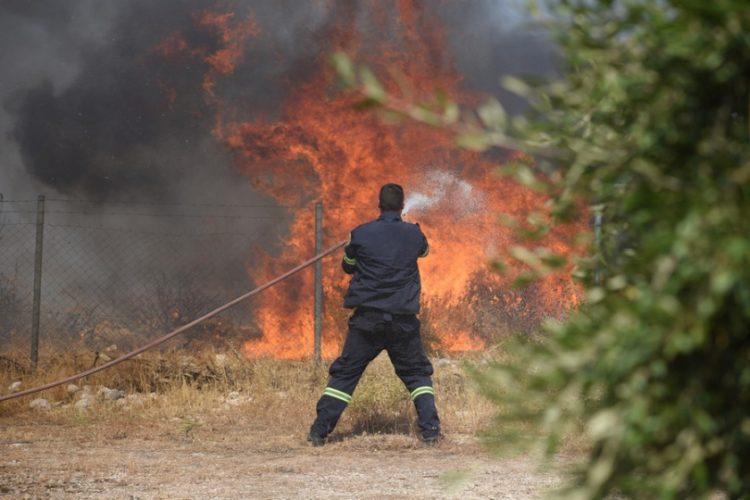 Πυροσβέστες επιχειρούν για την κατάσβεση της πυρκαγιάς σε αγροτοδασική έκταση σε περιοχή του νομού Αχαΐας (φωτ.: ΑΠΕ-ΜΠΕ / Γιώτα Λοτσάρη)