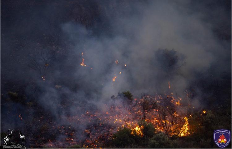 (Φωτ.: Πυροσβεστική Υπηρεσία Κύπρου)