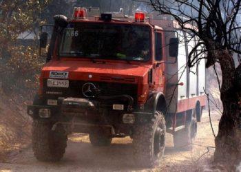 (Φωτ.: Πυροσβεστική Υπηρεσία)