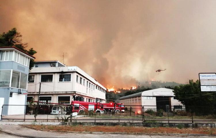 Η φωτιά στις Αφίδνες νωρίς το πρωί της Παρασκευής (φωτ.: Facebook / Δημήτρης Γκούφας)
