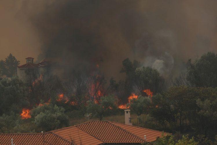 Φλόγες από την πυρκαγιά που καίει μέσα στην κατοικημένη περιοχή στις Αφίδνες (φωτ.: ΑΠΕ-ΜΠΕ/ Αλέξανδρος Μπελτές)