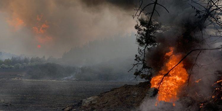 Φωτιά καίει δασική έκταση στο χωριό Ζωοδόχος Πηγή στην Εύβοια, Παρασκευή 6 Αυγούστου 2021 (φωτ.: ΑΠΕ-ΜΠΕ/ Παναγιώτης Κουρός)