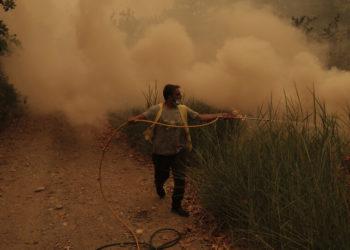 Κάτοικος επιχειρεί στην κατάσβεση της πυρκαγιάς στο χωριό Γούβες στην Εύβοια, Κυριακή 08 Αυγούστου 2021 (φωτ.: ΑΠΕ-ΜΠΕ/ Κώστας Τσιρώνης)