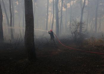 Εθελοντές πυροσβέστες επιχειρούν στην κατάσβεση της πυρκαγιάς στο Κρυονέρι, την Παρασκευή 06 Αυγούστου 2021 (φωτ.: ΑΠΕ-ΜΠΕ/ Ορέστης Παναγιώτου)