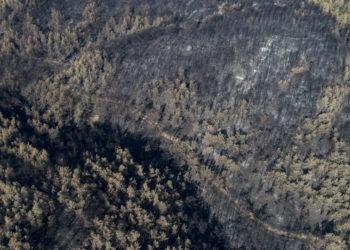 Ο απόηχος των πυρκαγιών στην Τουρκία (φωτ.: EPA/ Erdem Sahin)