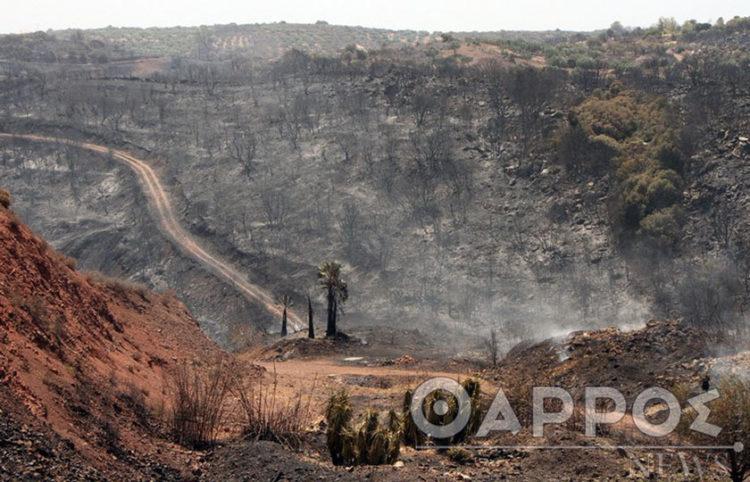 Καμένη γη μετά από πέρασμα της φωτιάς από Βασιλίτσι-Διαβολίτσι (πηγή: εφ. Θάρρος)