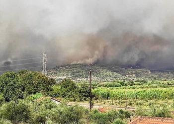 Η φωτιά που καίει στη Νεμούτα Ηλείας (πηγή: Facebook / Meteology)