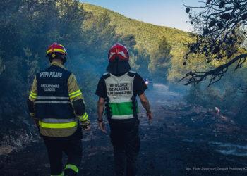 Πολωνοί πυροσβέστες στα Βίλια (φωτ.: Facebook / Państwowa Straż Pożarna)