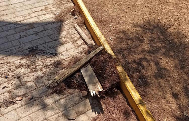 Πευκοβελόνες και ξύλα που χρησιμοποιήθηκαν ως προσάναμμα (φωτ.: Facebook / Barbara Thomaidou)