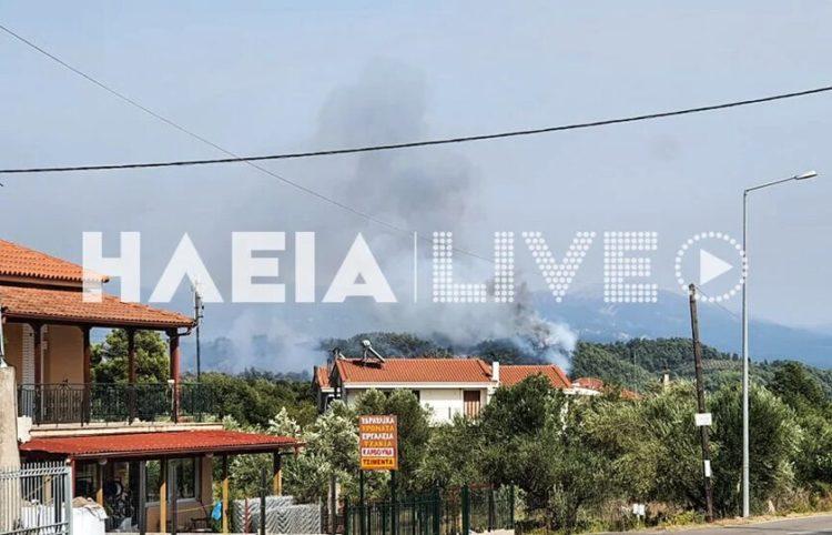 (Φωτ.: ilianews.gr)