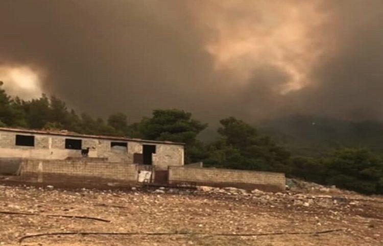 Η φωτιά από τα Βίλια πλησιάζει τα Μέγαρα (Φωτ.: Stavros Kokkalis/ Facebook)