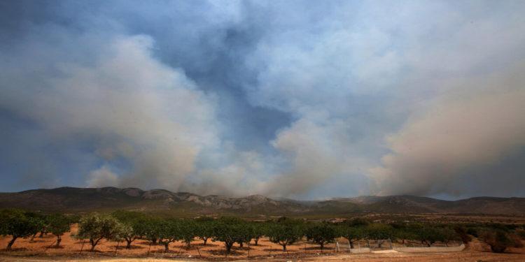 Πυκνοί καπνοί ανεβαίνουν από το όρος Πατέρας, έτσι όπως φαίνεται από την περιοχή Λιακωτό Μάνδρας, καθώς η φωτιά καίει σε δυσπρόσιτα σημεία, Τρίτη 17 Αυγούστου 2021 (φωτ.: ΑΠΕ-ΜΠΕ/ Αλέξανδρος Μπελτές)