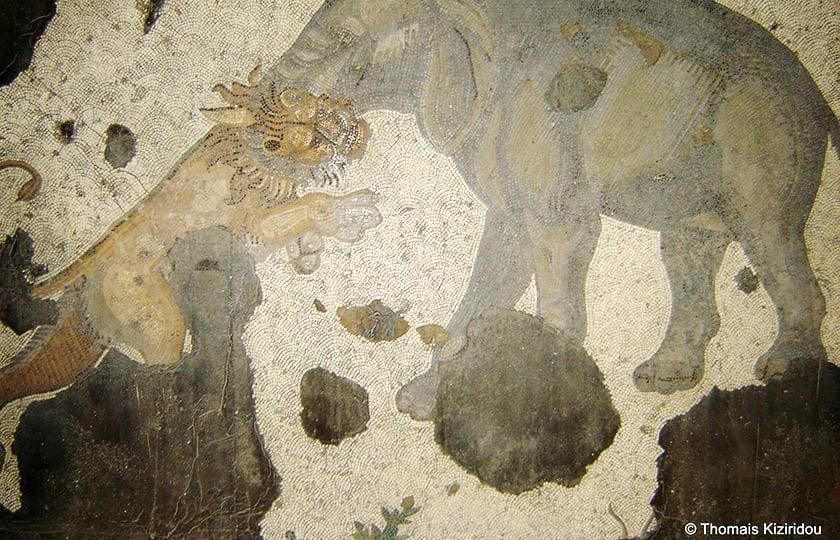 mosaiko megalo palati
